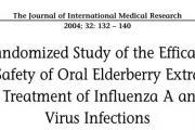 """接骨木莓:神奇的小黑果,它能有效预防流感,增强免疫力,欧洲的""""板蓝根"""""""