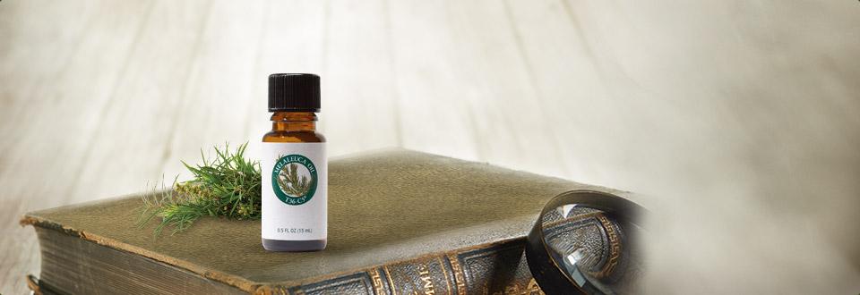 茶树精油-15毫升