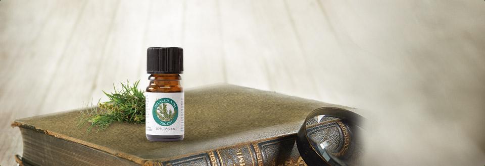 茶树精油-5.8毫升