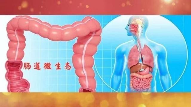身体各器官最爱的食物全在这,这样更健康