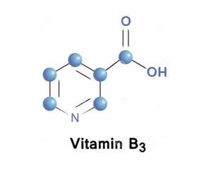 认识维生素B3
