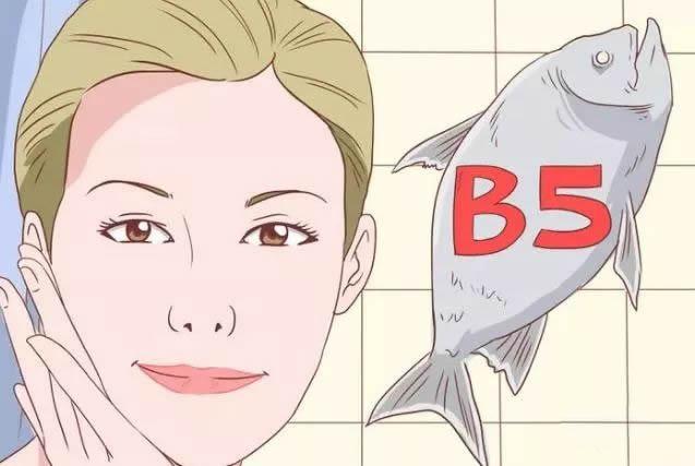 认识维生素B5(泛酸)