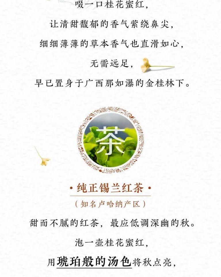 Hidden Garden桂花蜜红(调味茶)
