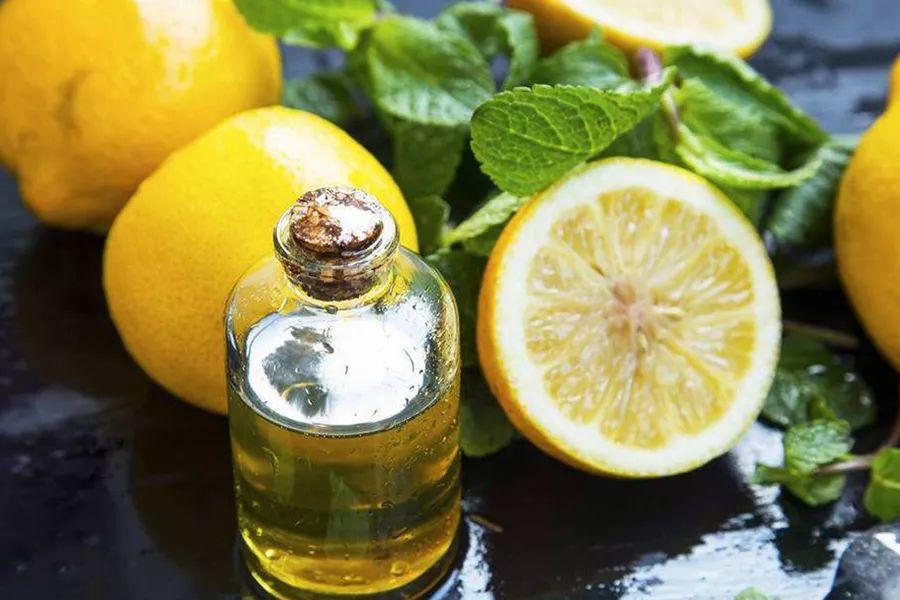 三款呼吸道清道夫精油:尤加利精油、乳香精油、柠檬精油