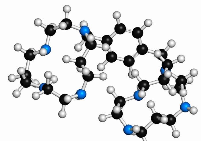 锌对人体的重要作用
